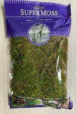 Miniature Fairy Garden Terrarium ~ Small Pack Preserved Forest Moss Fresh Green