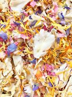 PINK IVORY Rainbow Biodegradable Wedding Confetti 1 litre Real Flutter Petals