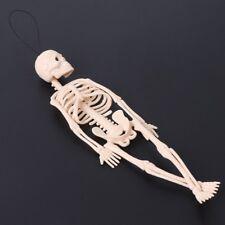 Skeleton Human Model Skull Full Body Mini Figure Toy Phone Hanger Halloween Gift