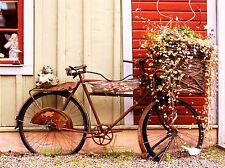VINTAGE BIKE BICYCLE FLOWER BASKET FRENCH ART PRINT POSTER PICTURE BMP150A