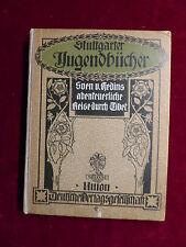 Libro, Sven Hedin, avventuroso viaggio in Tibet, Stoccarda libri gioventù