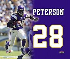Adrian Peterson, Minnesota Vikings, Wall Picture 11in, Canvas, Nfl Football, New