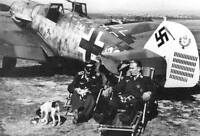 WWII B&W Photo Luftwaffe Bf109 Pilots & Dogs  WW2 World War Two Germany / 6054