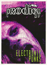 Lot Of 2 Posters:Music/Punk Rock : Prodigy - Electronic Punks #Lp4053 Rc41 J