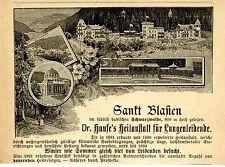 ST. Blasien dottor Haufe 's Heil Istituto F. polmonari soffrono storica la pubblicità di 1895