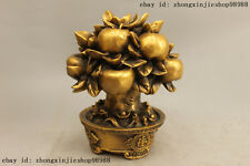 Chinese bronze Copper carving apple Tree Feng Shui Wealth Decor sculpture