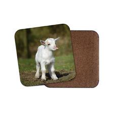 White Baby Goat Coaster - Cute Farm Kid Animal Mum Auntie Fun Cool Gift #8650