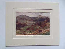 ISLE OF WIGHT HANTS SHANKLIN DOWN OLD PRINT DATED 1913 in10x8 DOUBLE MOUNT