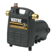 Cast Iron Portable Transfer Utility Pump Water Removal Motor Flood Tank Boat