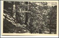 Schwarzatal Thüringen Ansichtskarte ~1950/60 Felspartie an der Schwarza Fluss