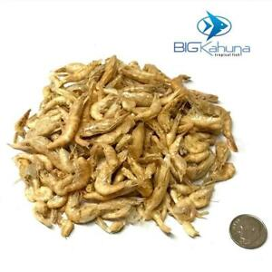 """RED SHRIMP FREEZE DRIED RIVER SHRIMP  1/2""""-1.5""""   BEST AVAILABLE! FREE SHIPPING!"""