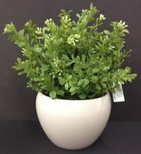 "PVC Boxwood Greenery Arrangement~White Ceramic Vase~11"" T x 5 1/2"" Round Vase"