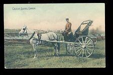 1909 Postcard  Caleche - A horse drawn cart Quebec  QU Canada B2859