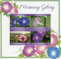 Marshall Islands Flowers Stamps 2019 MNH Morning Glory Nature Flora 4v M/S