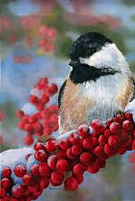 "Chickadee & Berries Winter House Flag Large Seasonal Yard Banner 29"" x 43"""