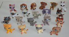 Petshop Lot Chiens Chats . Colley . Teckel . Chat Européen ... 20 Figurines .