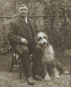 Edwardian Cabinet Style Photo Man Large Sheepdog Shaggy Dog Ward's Hounslow