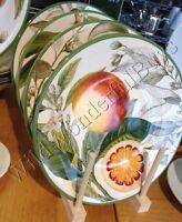 Williams Sonoma Set 4 Citrus Salad Plates Appetizer Dessert Grapefruit Orange