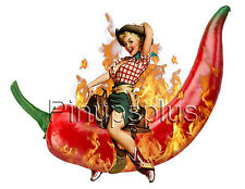 Red Hot Chili Pepper Cowgirl Pinup Girl Decals Waterslide S951