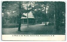 1949 A Walk in the Woods, Central Park, Somersworth, NH Postcard