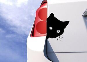 Cat Face Peering Funny Auto Car Bumper Window Vinyl Sticker Decals Decor