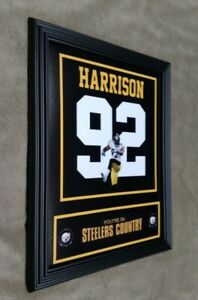 James Harrison Pittsburgh Steelers  8x10 Framed Jersey Photo