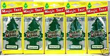 MAGIC TREE LITTLE TREE FOREST FRESH AIR FRESHENER FOR CAR -10 PK