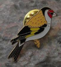 European Goldfinch Finch Family Garden Bird Wildlife Brooch Pin Badge