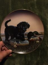 The Sportsmen Phillip Crowe, Finder's Keepers Black Labrador Lab Puppy Dog Plate
