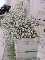 Premium Quality GYP Gypsophila Gypsophillia Fully wired stems  Wedding , roses,
