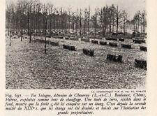 41 CHEVERNY DOMAINE SOLOGNE BOIS DE CHAUFFAGE  IMAGE 1948 PRINT