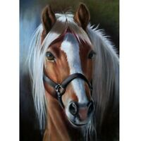 5D Full Drill Diamond Painting DIY Horse Embroidery Cross Stitch Kits Wall Decor