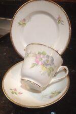 SALISBURY TEA CUP TRIO. Pale Pink / Pastel, country Flowers/ Floral, Gold Trim