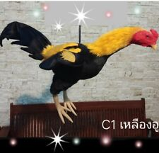 Doll Rooster Thai Chicken Silicone Realistic Hanging equipment training Cock C1