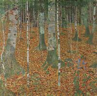 Birch Forest by Gustav Klimt Giclee Fine Art Print Reproduction on Canvas