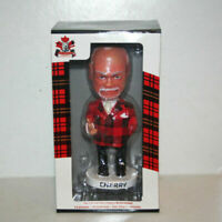 The Official Don Cherry Bobblehead