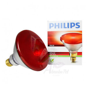 Philips PAR38 100W or 175W Economy Heat Bulb for use in Whelping Box Heat Lamps