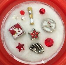 Floating Charm~*~St Louis CARDINALS Baseball MLB~*~Living Memory Locket