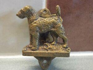 ANTIQUE / VINTAGE  DOOR KNOCKER WIRE HAIRED FOX TERRIER BRASS DOG SMALL