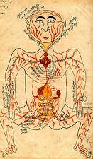 Incorniciato stampa-VINTAGE ORIENTAL Antico corpo umano (Picture DOTTORE MEDICO ART)