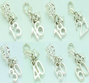 Birthday Age Number Charm Clip On or Bail Fits Ladies Girls Bracelet Necklace