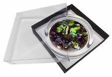 Tropical Fish Glass Paperweight in Gift Box Christmas Present, AF-T40PW
