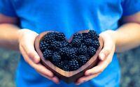 100 graines de mûres des jardins fruits verger