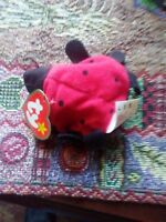 "Ty Teenie Beanie Baby - ""Lucky"", the Ladybug , Brand New - not in the package"