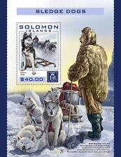 Solomon Islands 2016 Gomma integra, non linguellato Sledge Cani da Slitta Husky HUSKIES Amundsen 1v S/S FRANCOBOLLI