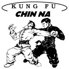 CHIN NA KUNG FU BLACK BELT HOME STUDY CERTIFICATION COURSE! Submission Grappling