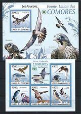 COMORES KOMOREN 2009 MINI SHEET BLOCK MiNr: 2407 - 11, 525 BIRDS VÖGEL IMPERF **