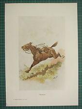 "1900 BOER WAR ERA MILITARY PRINT ~ ""RIDERLESS"" RUNAWAY HORSE ~ JOHN CHARLTON"