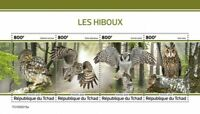 Chad Birds on Stamps 2020 MNH Owls Little Great Grey Long-Eared Owl 4v M/S