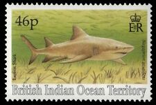 BR INDIAN OCEAN 157 (SG161) - Lemon Shark (pa16251) BIOT